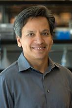 Deepak Srivastava, M.D.'s picture
